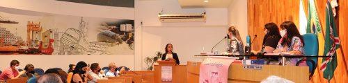 Dra Elen apresenta Programa Flor de Lótus na Câmara de Vereadores